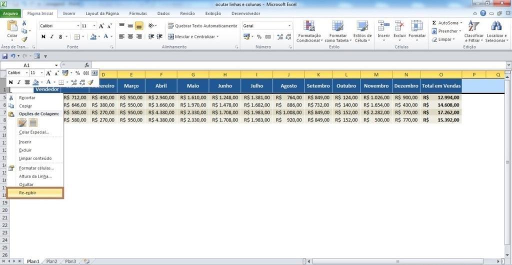 Ocultando linhas e colunas no Excel06